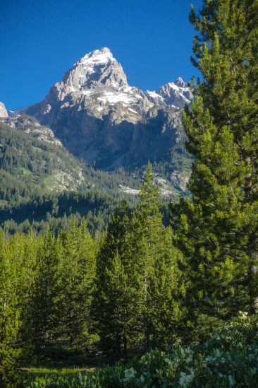 Grand Teton and Disappointment Peak