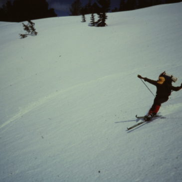 Salomon X Alp Demos Now Available | Skinny Skis | Jackson Hole